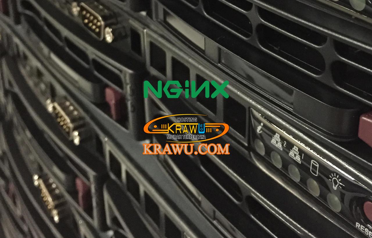 nginx web server » Membangun Situs Web Shorten URL dengan YOURLS